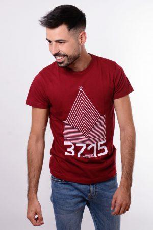 teide 3715