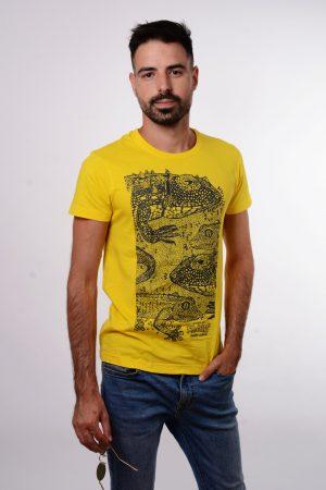 Yellow gekko